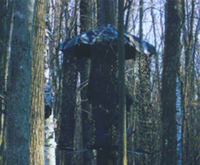 Hunting Blinds in Michigan