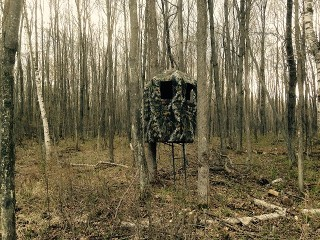 Double Ladder Stand Tree Blind