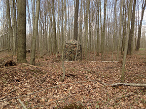Mossy Oak Country Blind on Ground
